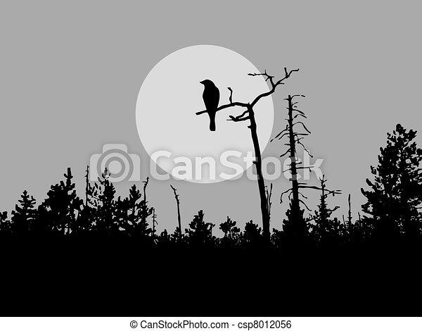 silhouette bird on tree     - csp8012056