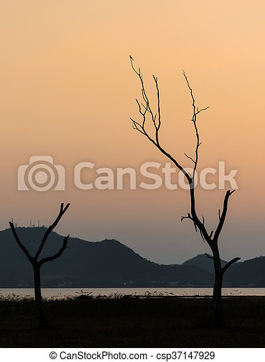 Silhouette dry tree and lake with mountain range background in sunset sky - csp37147929