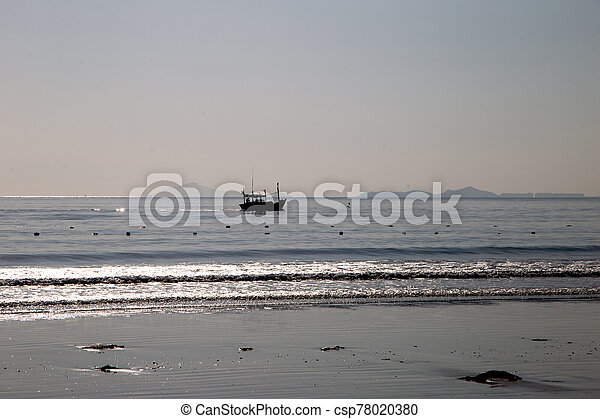 silhouette Fish Boat on the morning sea - csp78020380