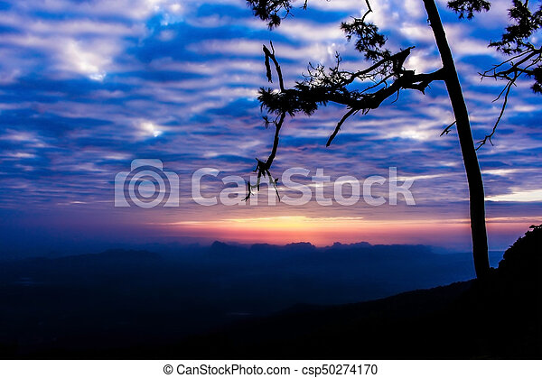 Silhouette landscape mountain with tree at sunset - csp50274170