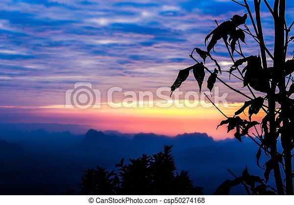 Silhouette landscape mountain with tree at sunset - csp50274168