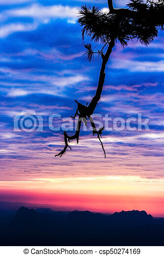 Silhouette landscape mountain with tree at sunset - csp50274169