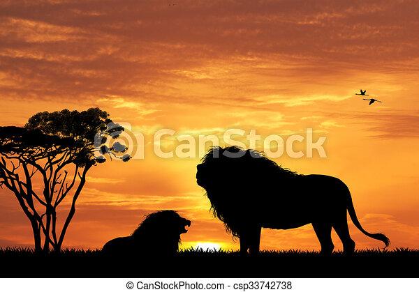 Silhouette lion coucher soleil coucher soleil lion - Coucher de soleil dessin ...
