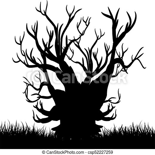 Silhouette Of A Tree Without Leaves Black Night On A White