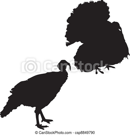 Silhouette of a turkeys - csp8849790