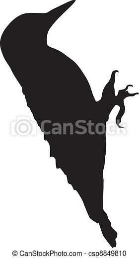 Silhouette of a woodpecker - csp8849810