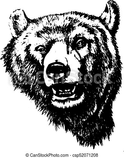 Silhouette of an evil grizzly bear (head), on white background, - csp52071208