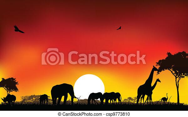 silhouette of animals wildlife - csp9773810