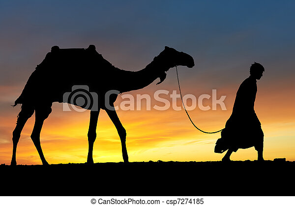 Silhouette of Arab with camel at sunrise - csp7274185