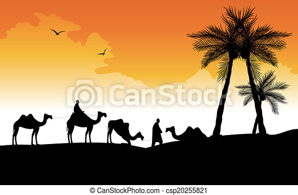 silhouette of camels  - csp20255821
