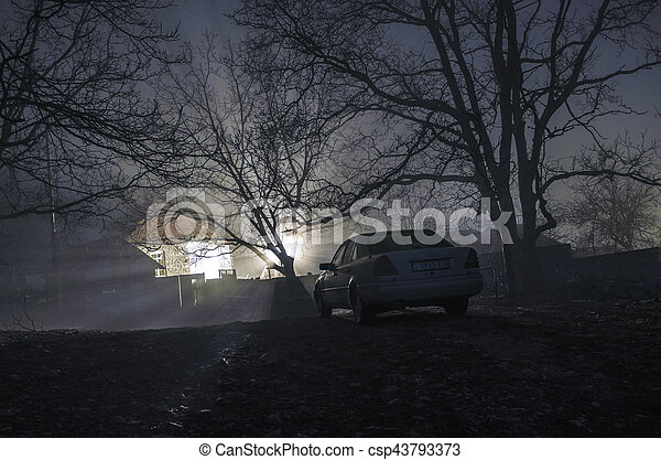 Silhouette Of Car And Trees At Night Forest With Fog Surreal Lights