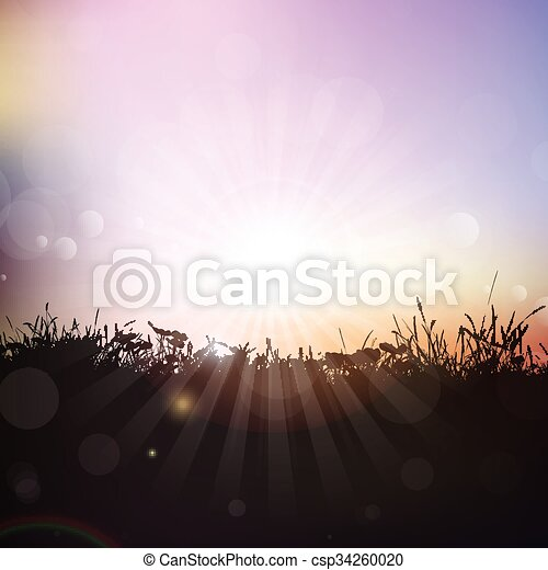 Silhouette of grass and plants against sunset sky - csp34260020