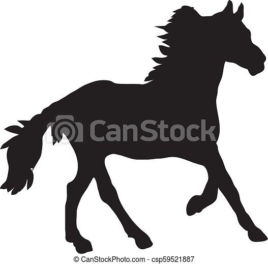 Silhouette Of Horse On A White Background Vector - csp59521887