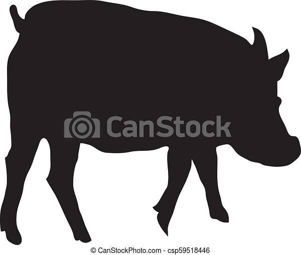 Silhouette Of Pig On A White Background Vector - csp59518446