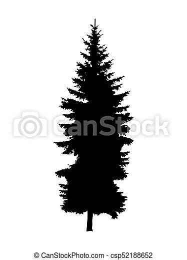 Silhouette of pine tree. - csp52188652