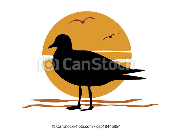 Silhouette of seagull on sea sunset - csp18445894