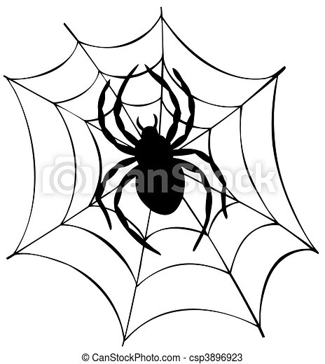 Silhouette of spider in web - csp3896923