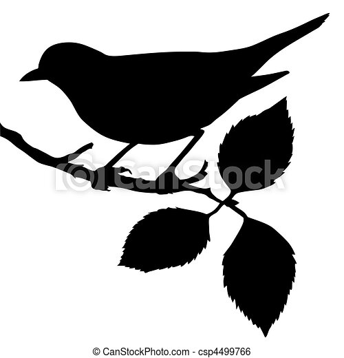 silhouette of the bird on branch - csp4499766
