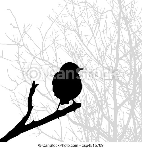 silhouette of the bird on branch - csp4515709
