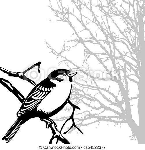 silhouette of the bird on branch - csp4522377