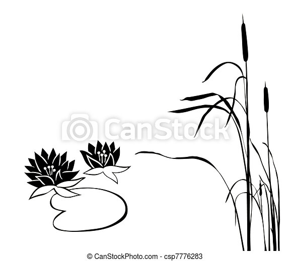 silhouette of the marsh plants on  - csp7776283