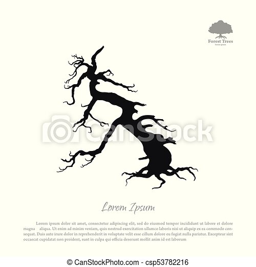 Silhouette of the old broken tree - csp53782216