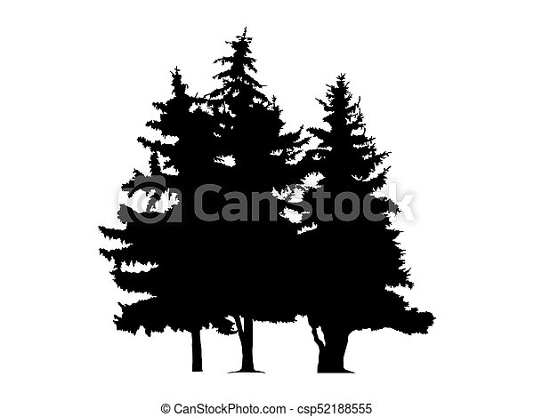 Silhouette of three pine trees. - csp52188555