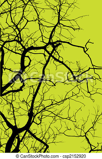 silhouette of tree - csp2152920