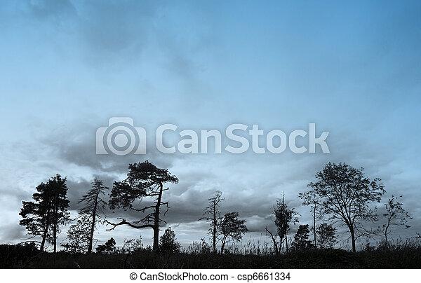 Silhouette of trees - csp6661334