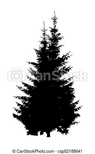 Silhouette of two pine trees. - csp52188641