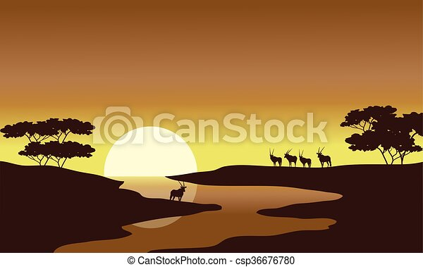 Silhouette of zebra in riverbank - csp36676780