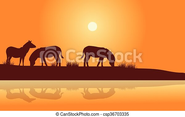 Silhouette of zebra in riverbank - csp36703335
