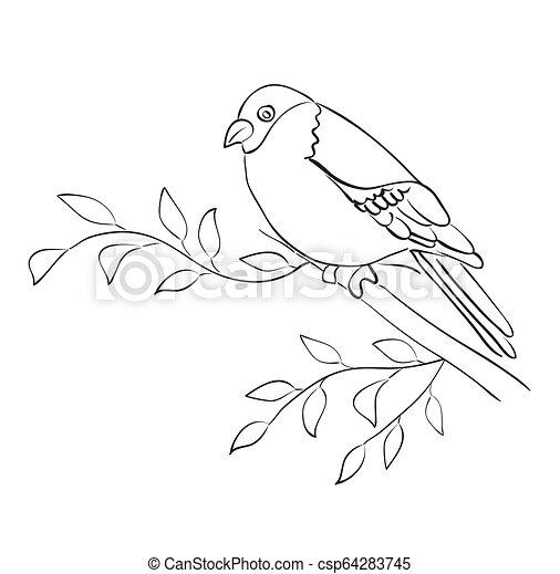 silhouette, passero, sedere, -, vettore, ramo, uccello - csp64283745