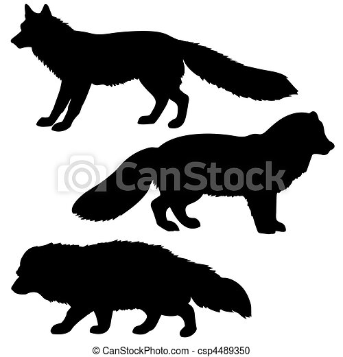 silhouette polar fox, badger, vixens isolated on white background - csp4489350