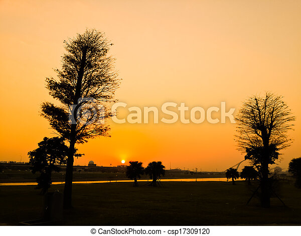 Silhouette Tree - csp17309120