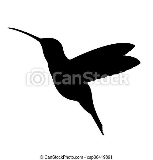 silhouette., vecteur, 10., eps, oiseau - csp36419891