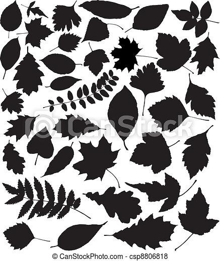 silhouette, vettore, nero, foglie - csp8806818