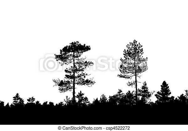 silhouette wood on white background - csp4522272