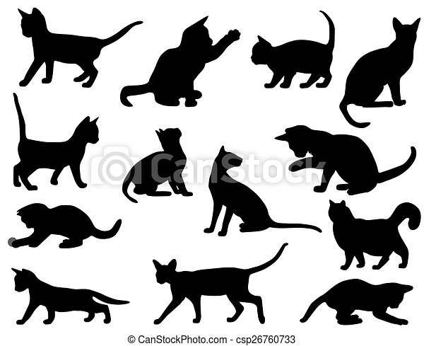 silhouettes, chats - csp26760733