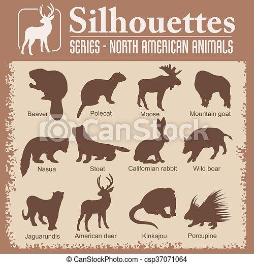 Silhouettes - North American animals. - csp37071064