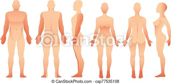 silhouettes of man ans women front side and back view vector human body for your design https www canstockphoto com silhouettes of man ans women front 77535108 html