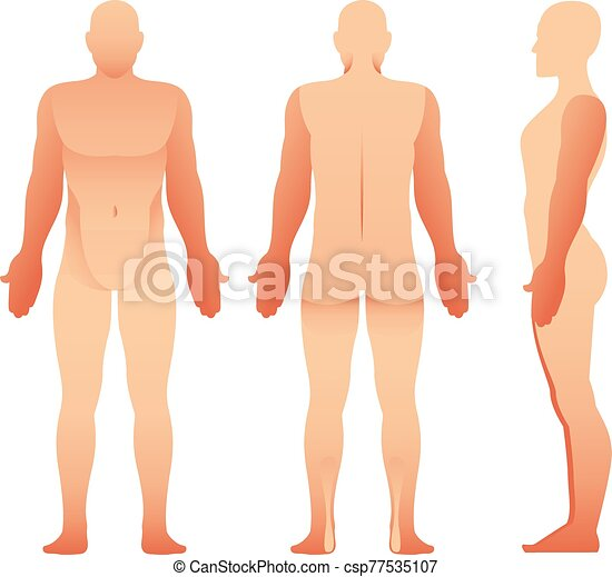 silhouettes of man front side and back view vector human body for your design https www canstockphoto com silhouettes of man front side and back 77535107 html