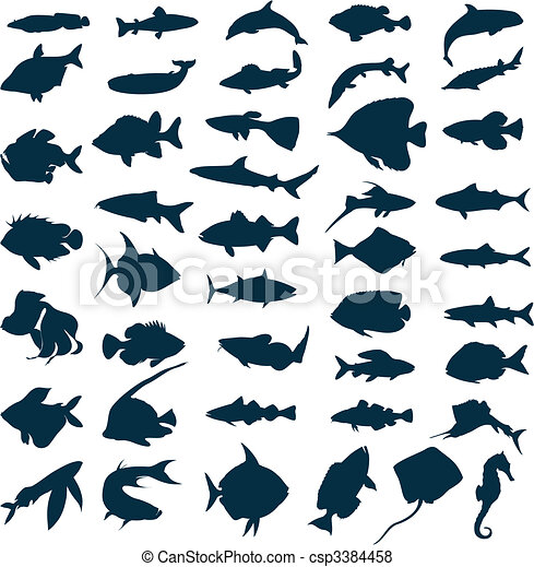 Silhouettes of sea and lake fishes. A vector illustration - csp3384458