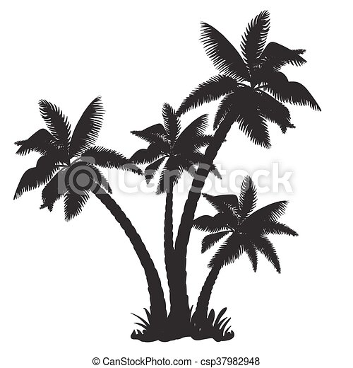 Silhouettes of the coconut trees - csp37982948
