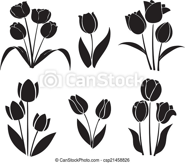 silhouettes of tulips vector is a eps 10 illustrator file https www canstockphoto com silhouettes of tulips vector 21458826 html
