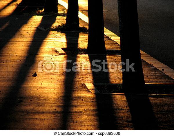 silhouettes trees - csp0393608