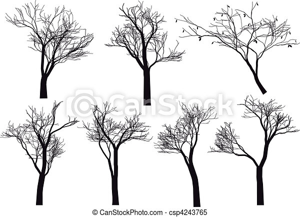 silhouettes, vecteur, arbre - csp4243765