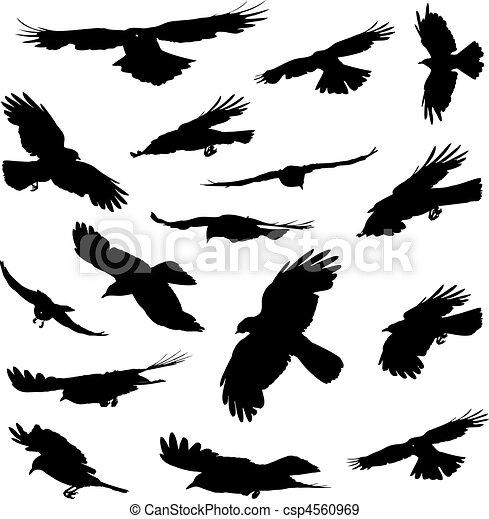 silhouettes, vliegende vogels - csp4560969