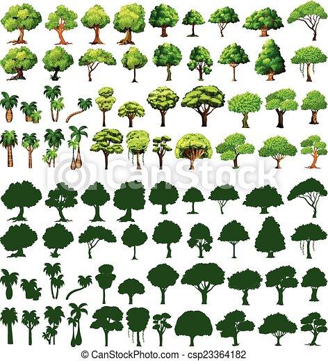 silhoutte, arbres - csp23364182