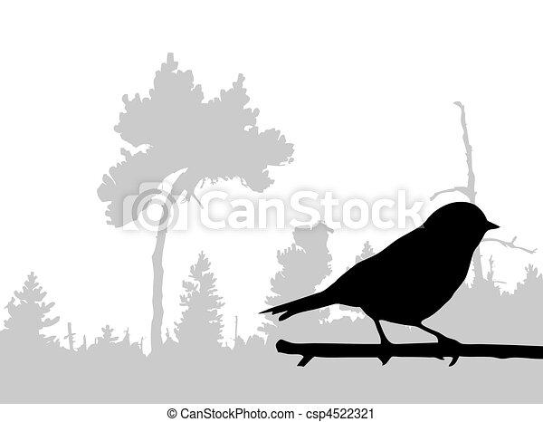 silhuet, fugl, branch - csp4522321
